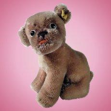 Adorable Steiff Dog Mopsy
