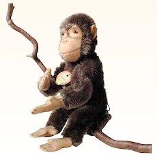 Chimpanzee Jocko Children's Darling Steiff