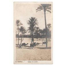 1913 RPPC Tripoli Lungo La Costa Italo-Turkish War Era, Arabs Riding Camels in Desert Real Photo Postcard