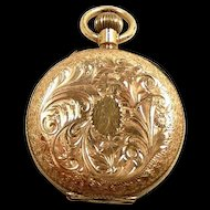 Darling Gold Open Hunter's Case Ladies Chatelaine Style Pocket Watch c. 1890