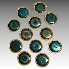 Twelve Early 1930-1940's Bakelite and  2 Layer Celluloid Large Buttons.  Green, Black & Tan.  Unusual.