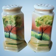 Seascape Nippon Salt & Pepper Hand Painted Shakers