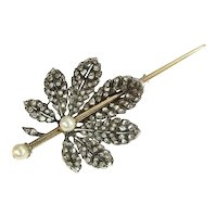 French Antique Victorian brooch chestnut leaf completely diamond covered - ca. 1870