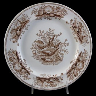 Victorian Staffordshire Brown Transferware Plate – Shell 1877 (30% OFF)