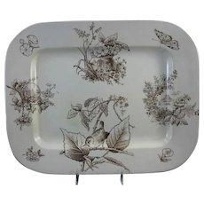 Aesthetic Brown Transferware Platter ~ Bird & Moth 1879
