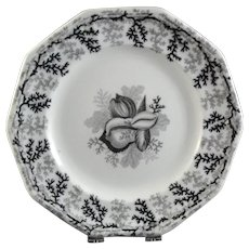 Victorian English Black Mulberry Transferware Plate - Seaweed & Shells ca. 1850-60s