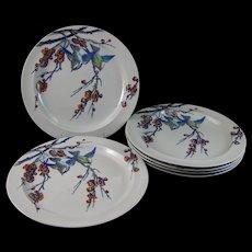Set / 6 Victorian Staffordshire Polychrome Transferware Large Plates - Birds 1878