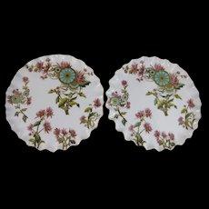 Pair Aesthetic Victorian Polychrome Transferware Cabinet Plates ca. 1883