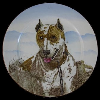 Large Antique Victorian Cabinet Plate – English Bull Terrier ca. 1905 (30% OFF)