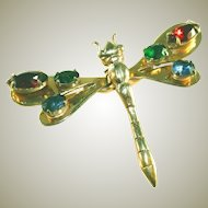 Gold Plated Reinad Vintage Dragon Fly Colorful Glass Prong Set Rhinestones Clip Pin