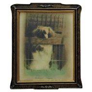 Antique Chou Chou Dog Print Deermont Chuanne