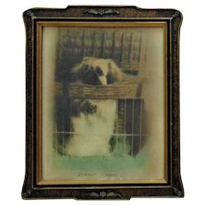 Antique Chou Chou Dog Print Deermont Chuanne