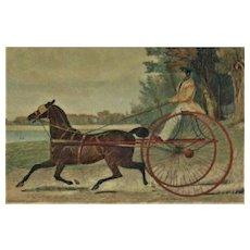 RARE Original Antique Harness Racing Engraving c. 1842 Famous Horse Lady Hampton G. F. Herring
