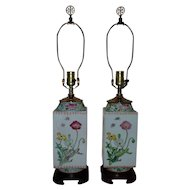 Pair of Chinese Export Lamps Porcelain w/ Flowers Bees Grasshoppers Butterflies & Dragonflies Asian Vase Form