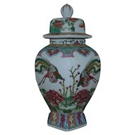 LARGE Vintage Chinese Porcelain Ginger Jar Birds of Paradise & Flowers