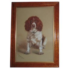 Antique Portrait Painting Cocker or Springer Spaniel Dog Watercolor Signed & Dated