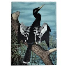 LARGE John Costin Anhinga Bird Engraving Hand-Colored Signed & Numbered