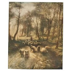 Antique Print of Shepherd & Sheep in the Woods