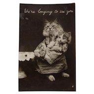 Real Photo Cat Greeting Postcard