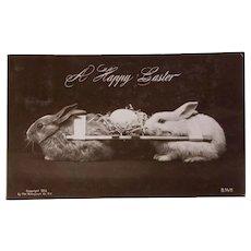 Rotograph Easter Postcard, 1908