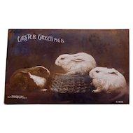 Easter Rotograph Postcard ,1907