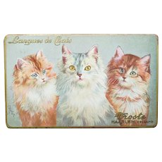 Vintage Droste Chocolate Tin with Cats