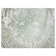 Splendid 19th century flounce Brussels Point de Gaze lace : floral motifs + 5 yards