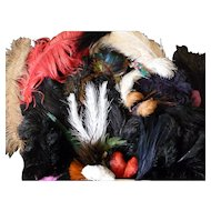 Large batch 75 superb antique French millinery feathers : projects