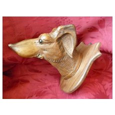 Finely carved antique wooden greyhound or whippets dog's head with glass eyes : mounted on a shield