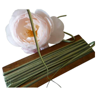 Pretty 19th century French narrow ombre silk ribbon : green tones : unused on original card : doll projects :  4 yard length