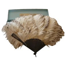 Delicious 19th C. French celluloid ostrich feather fan in original box