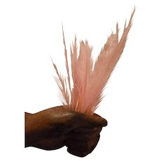 14 Small pink feathers :  doll's bonnet or hat projects