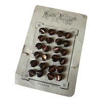 24 French tiny brown buttons : Haute Nouveaute Paris card : 3/8th inch : Jumeau Bebe doll projects