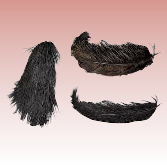 3 Antique Victorian Black Large Ostrich Feathers- Hat Millinery Projects!