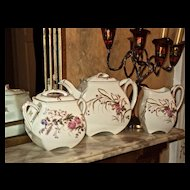 Limoges Old Quaint Tea Set with Sprigs of Wild Flowers