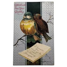 Happy New Year Postcard Bird Loving Thoughts