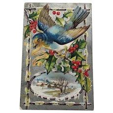 Happy New Year Postcard/New Year Bird Series
