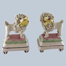 19th C Pair Small Staffordshire Poodles Retrieving Birds