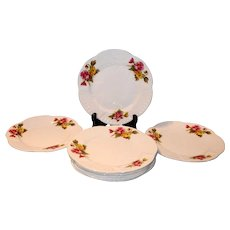 Shelley Begonia Dainty Luncheon Plate
