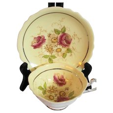 Paragon Yellow Roses & Daisies Cup & Saucer