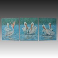 Triptych Oil Painting ~ White Pelicans At Myakka River State Park