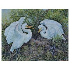 Framed Large Oil Painting ~ Courting Great Egrets