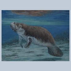 Large Oil Painting ~ Manatee In Crystal River