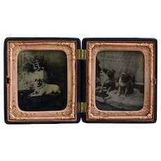 Antique Pug Dog Tintype Photographs