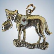 "WW1 French Red Cross Dog Fund Raising Medal ~ ""L'Ami Des Poilus"""