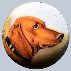"C1896 Miniature Dog Portrait ~ Dachshund Dog Champion ""Pterodactyl"""