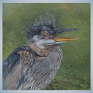 Large Oil Painting ~ Baby Blue Heron