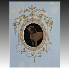 Antique French Gem Tintype Photo ~ Hound Dog Portrait #2