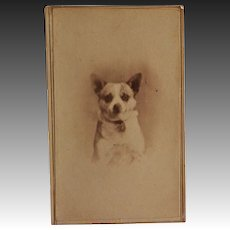 Victorian CDV Photo ~ Terrier Dog Portrait