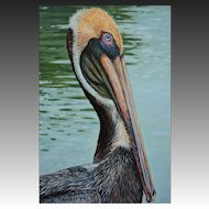 Large Oil Painting ~ Brown Pelican Portrait